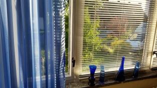 Fenster Wohnzimmer 1. OG